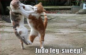 Cat Foot Sweep